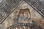 Représentation d'un cervidé dans l'angle du décor central du pavement mosaïqué du Ier siècle avant notre ère découvert à Uzès (Gard), 2017.